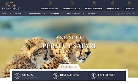 cs-related-safarihub